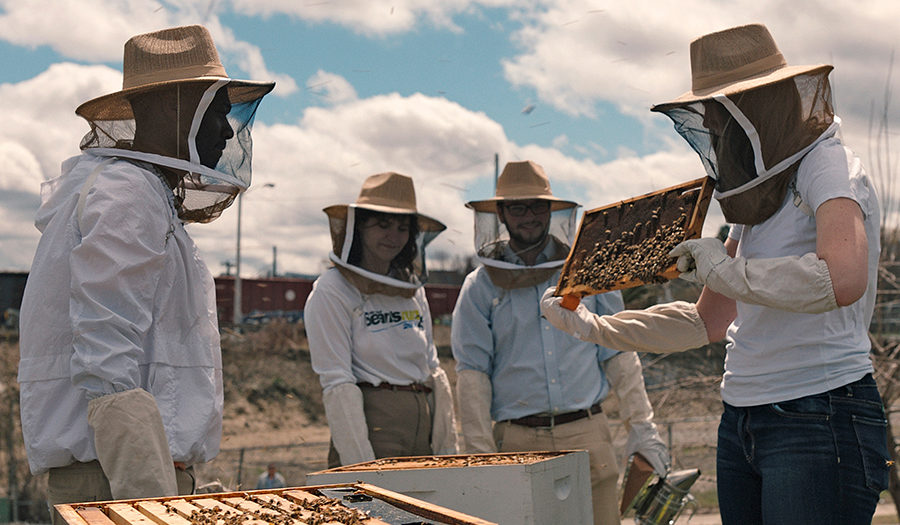 Bee keepers in suits