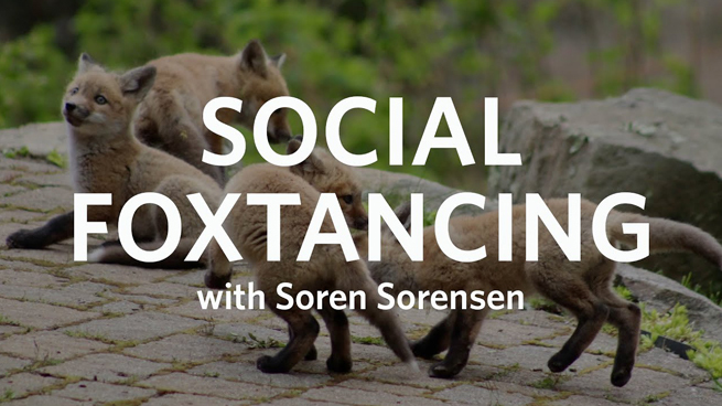#SocialFoxtancing with Professor Soren Sorensen