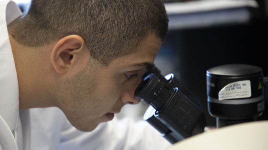 Ibrahim Ozgenc '20 conducting research at Cornell Weill Medical College