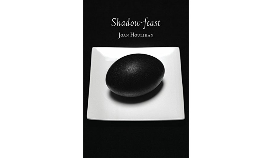 book cover of shadow-feast