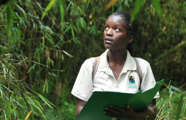 Graduate student conducting research in a forest in Rwanda