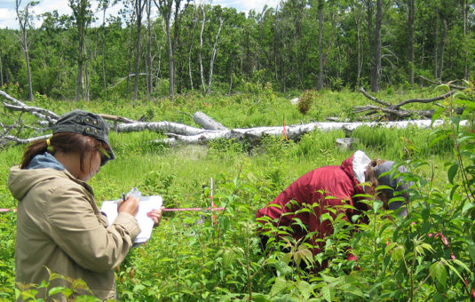 female student writing on pad while male student researching plants in field.