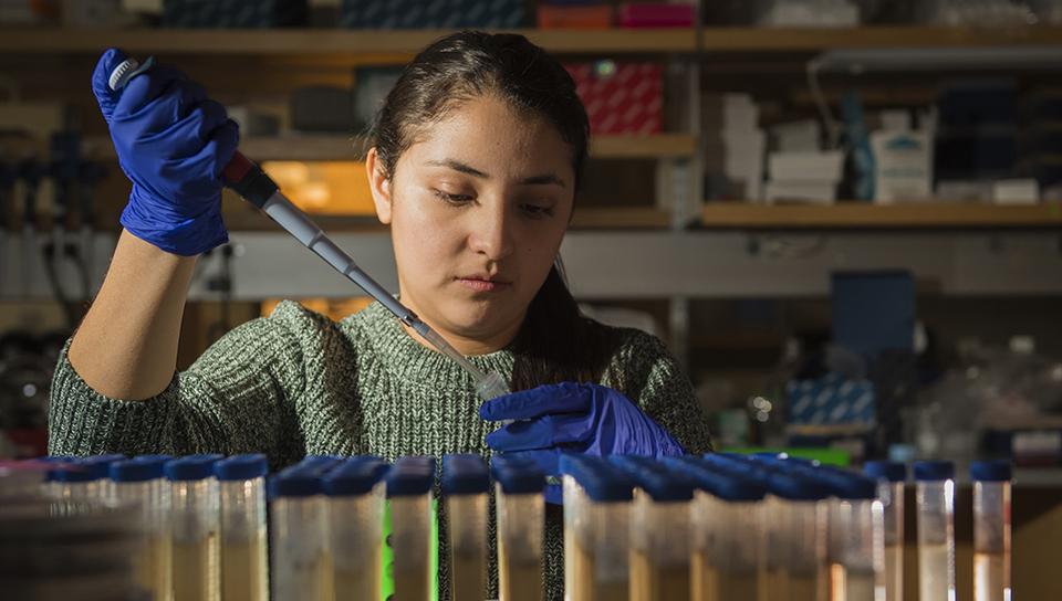 graduate female studenyt in chemistry