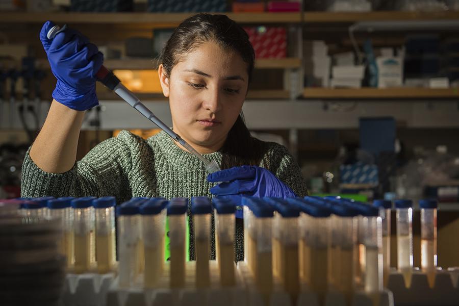 graduate student in chemistry lab