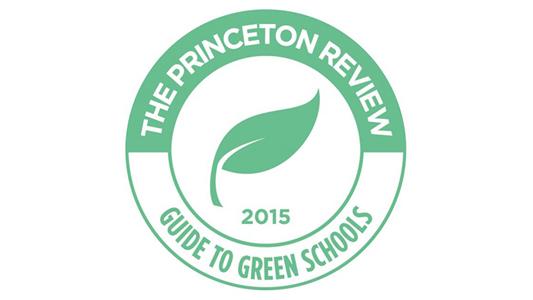 Princeton Review Award
