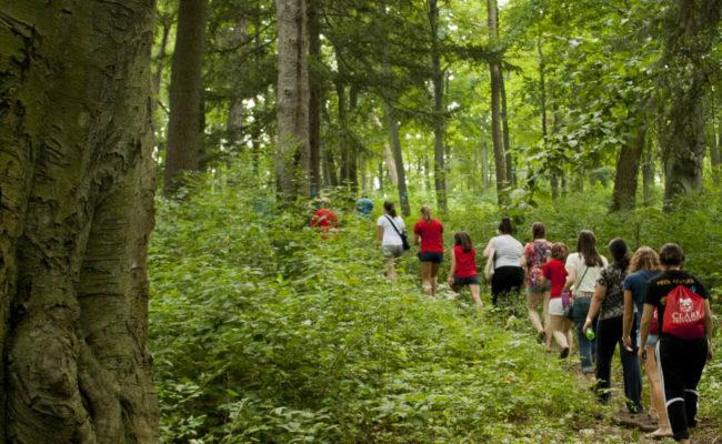 kids walking up path