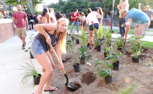 kids planting trees