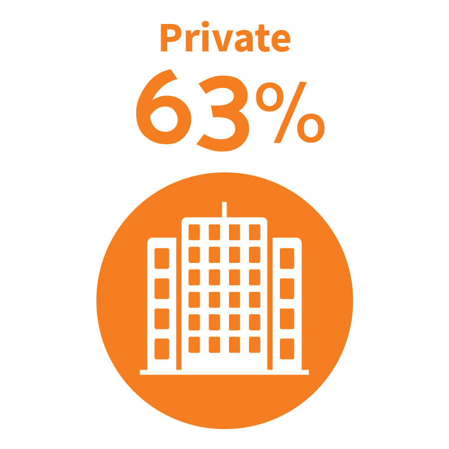 graphic image - Private Sector 63%