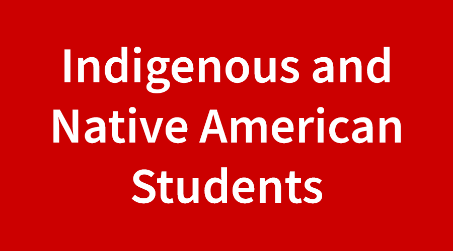 Indigenous and Native American Students