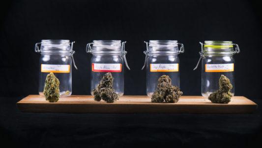 tubes of cannabis