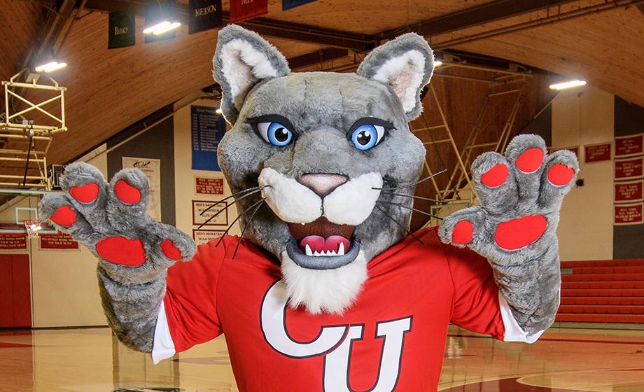 University Mascott cougar