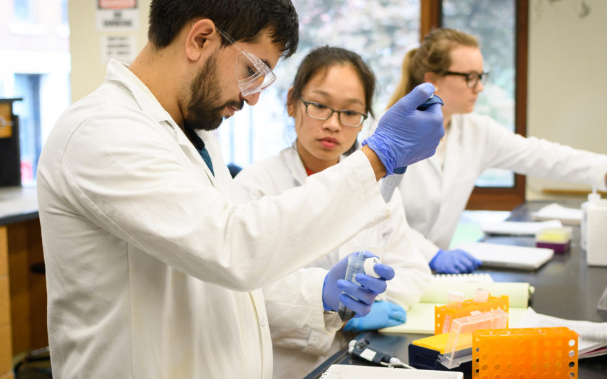 Major in Biochemistry and Molecular Biology - Clark University