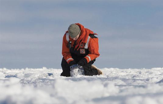 karen frey on iceberg ding research