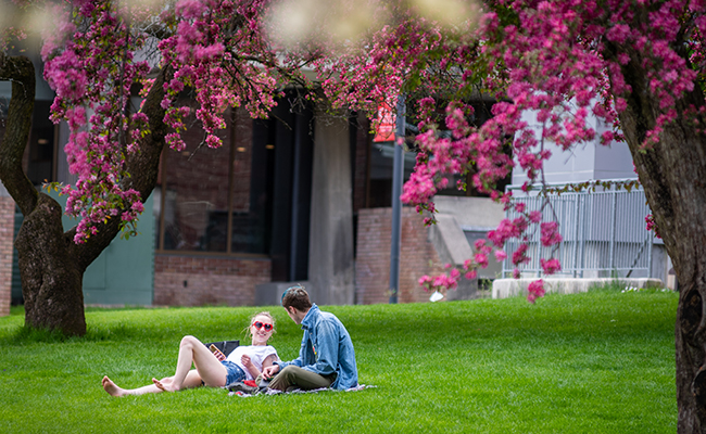 two students sitting on green with flowered tre