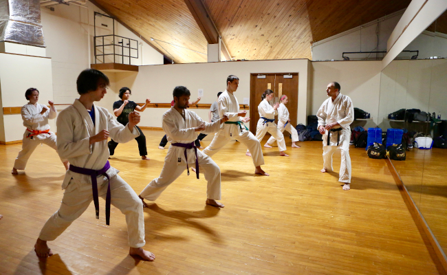 Young adults practicing karate