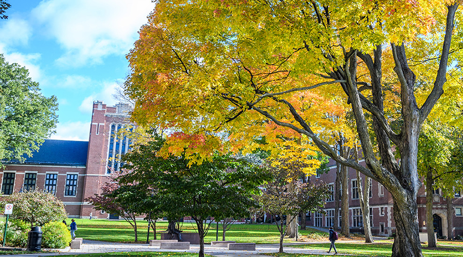 view of fall coloed tree with geography building