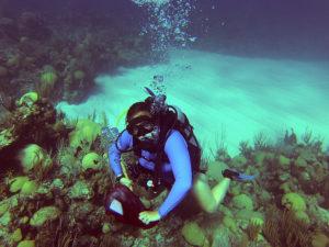 Hannah Reich '15 explores a coral reef in Bermuda.