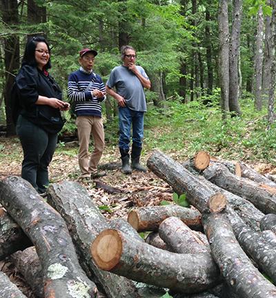 Noemia Kazue Ishikawa (from Brazil), left, and Kazuhisa Terashima (from Japan) visit with a Massachusetts farmer who uses the traditional log method to grow shiitake.