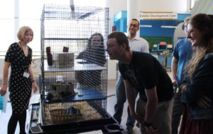 Betsy Loring of the EcoTarium (left) and professor Colin Polsky (third from left) look on as student observe rats that could be used in an exhibit