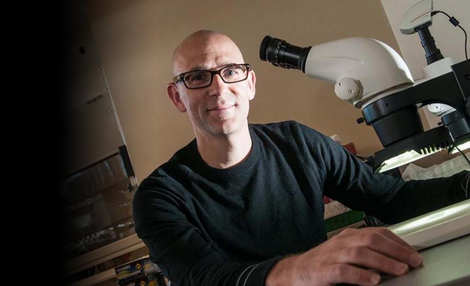 Prof. Rob Drewell