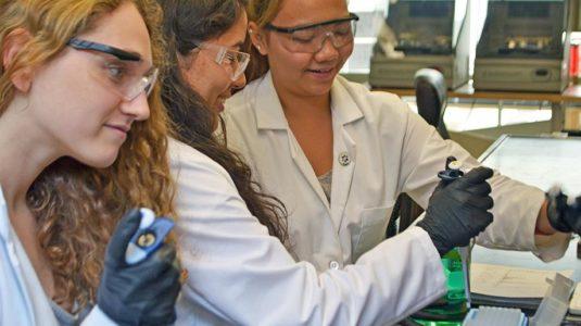 undergraduate-researchers-donald-spratt-lab-clark-university