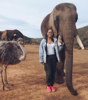 Marissa Callender interacted with amazing wildlife during her internship with Africa Media.