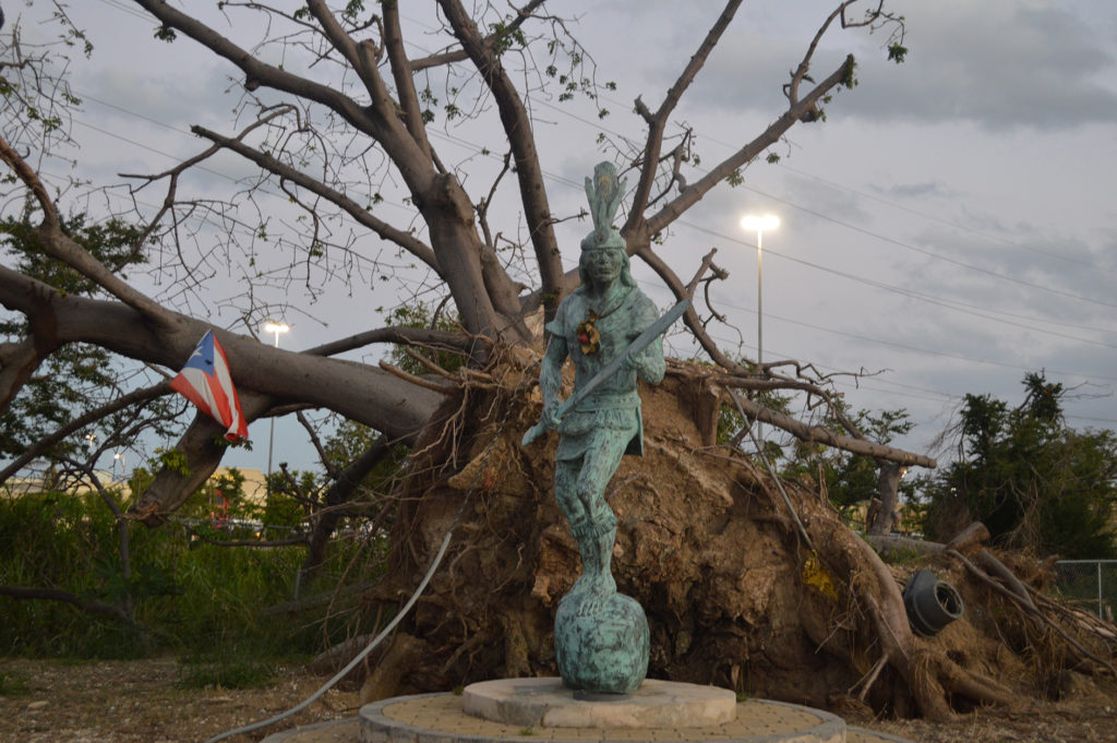 Fallen tree with Puerto Rico flag and statue