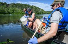 Linnea Menin, in a canoe with Professor Ahlgren and Emily Dart, scoops up water