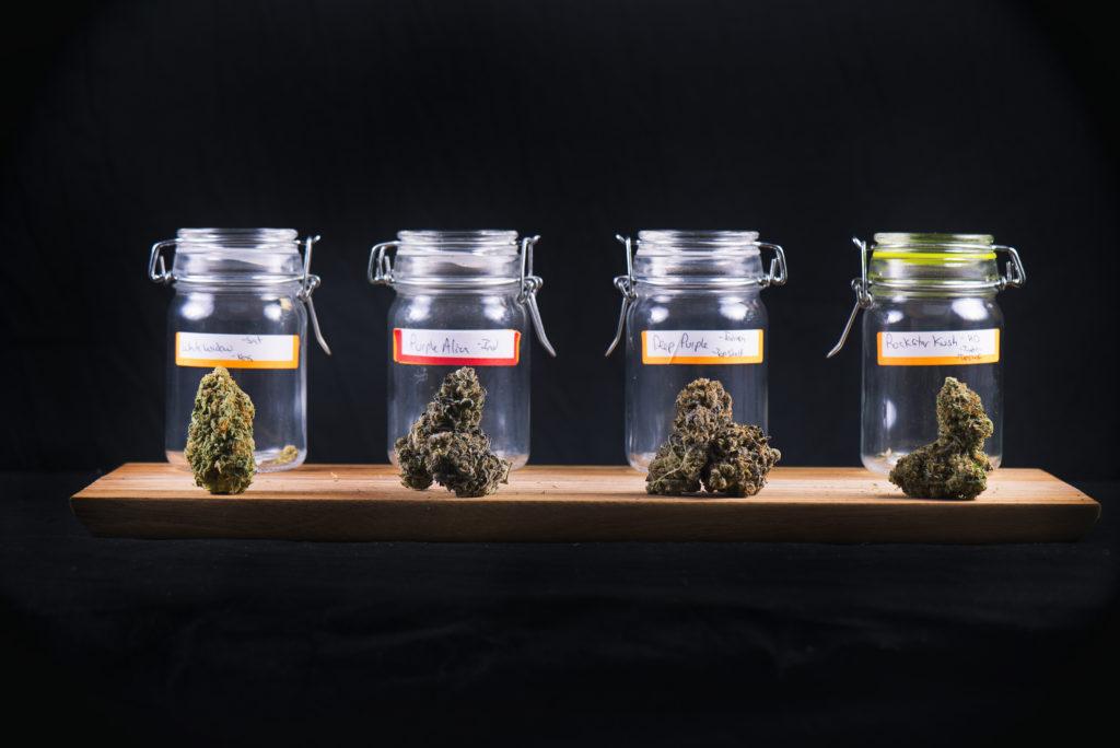 cannabis jars