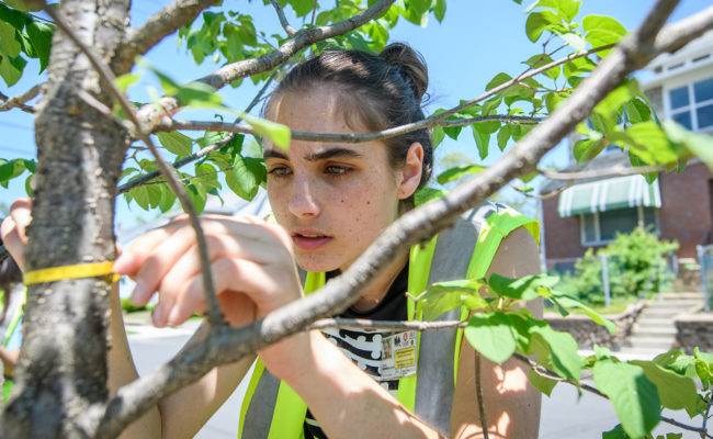 HERO students research in Chicopee, MA