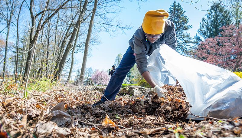Hadwen Arboretum cleanup