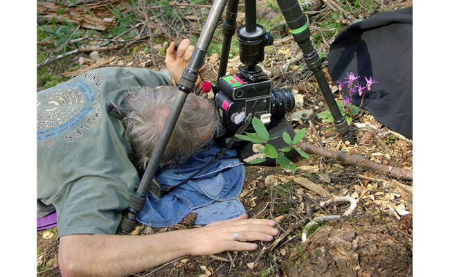Rob Badger photographing wildflowers