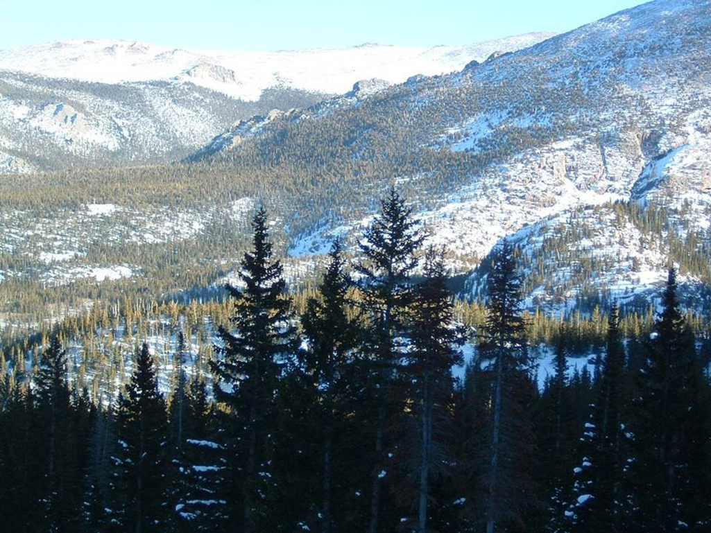 In the Colorado Rockies, bright snow contrasts with the dark forest, which creates the albedo effect. v