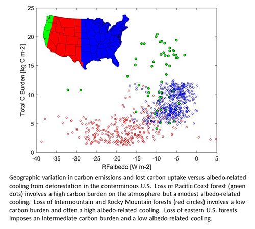 Figure explaining geographic variation in forest loss