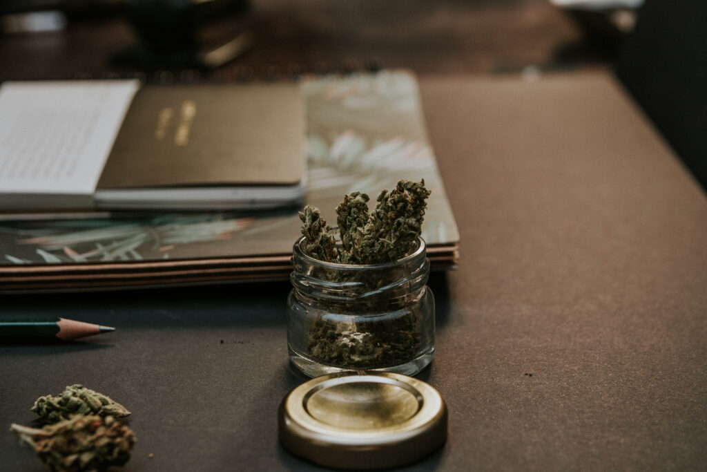 Cannabis plant on desk with notebook